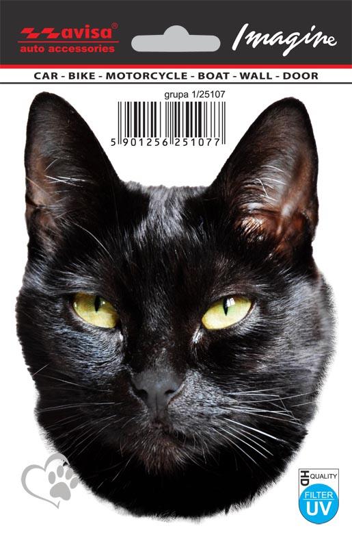 Fotky pěkné černé kočičky