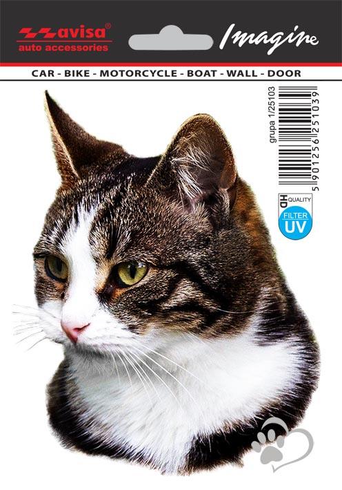 Zdarma černá kočička stránky